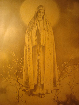 Our Lady of Fatima Book 5