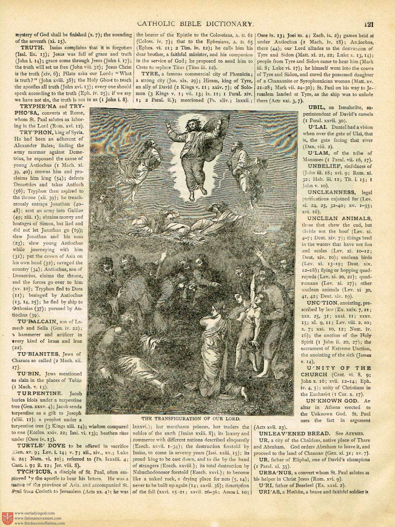 The Haydock Douay Rheims Bible page 0246