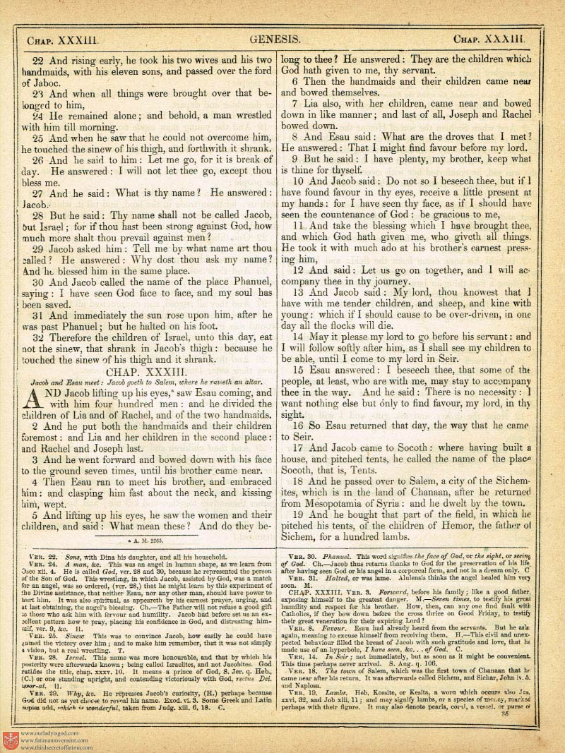 The Haydock Douay Rheims Bible page 0354