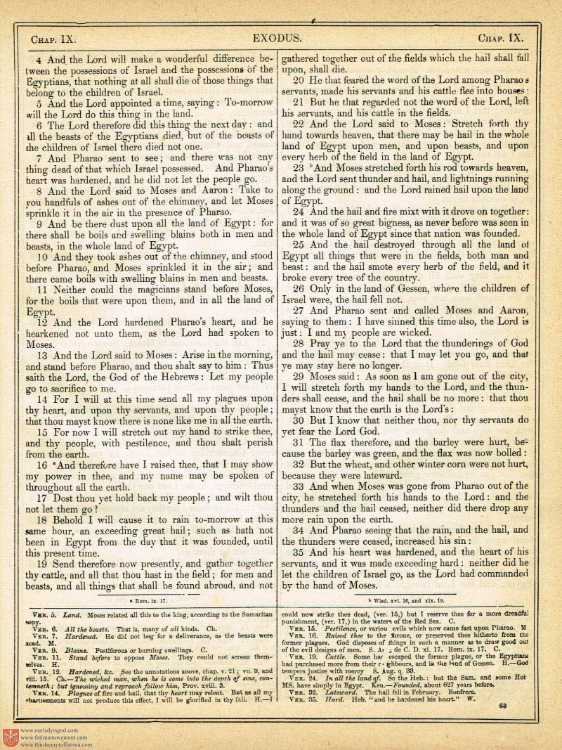 The Haydock Douay Rheims Bible page 0382