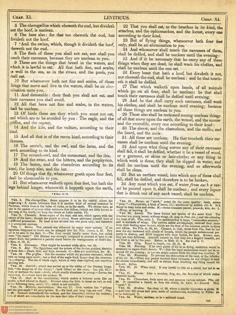 The Haydock Douay Rheims Bible page 0434