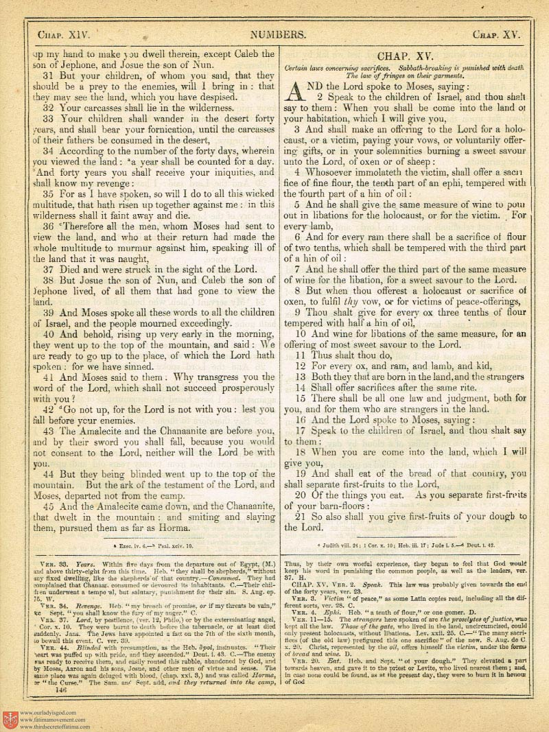The Haydock Douay Rheims Bible page 0471