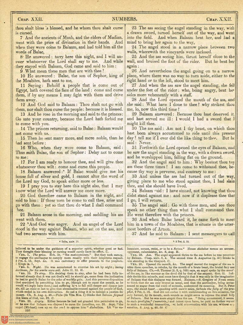 The Haydock Douay Rheims Bible page 0483