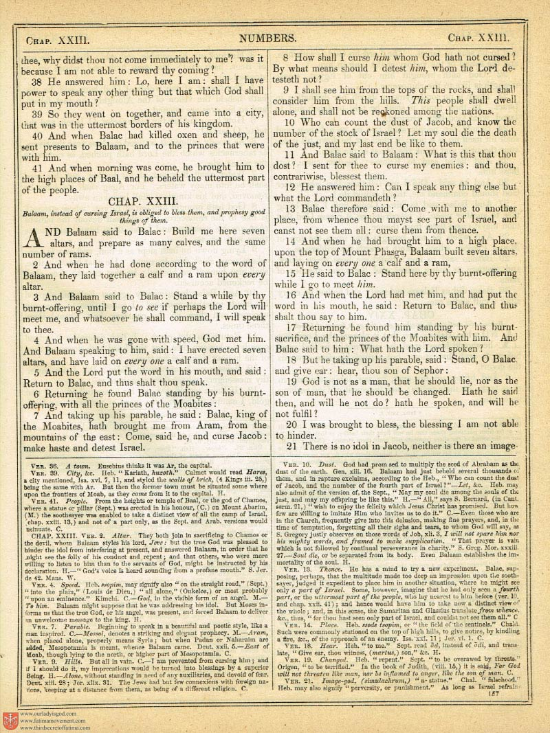 The Haydock Douay Rheims Bible page 0484