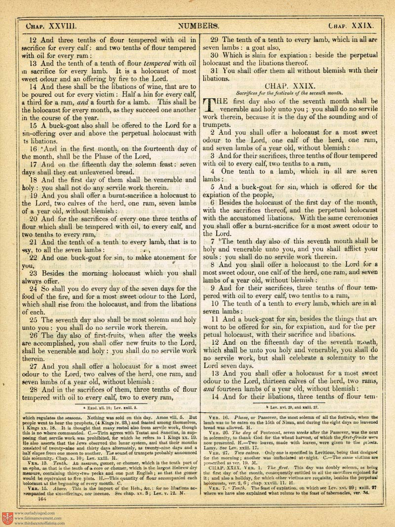 The Haydock Douay Rheims Bible page 0491