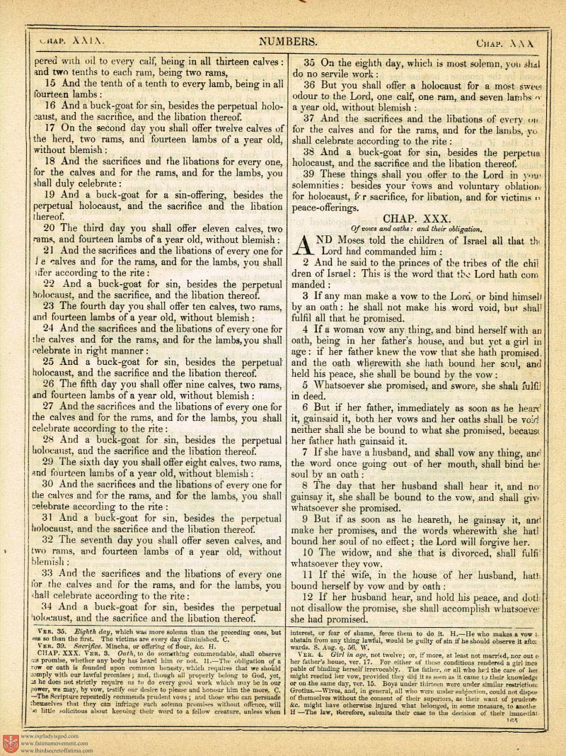 The Haydock Douay Rheims Bible page 0492