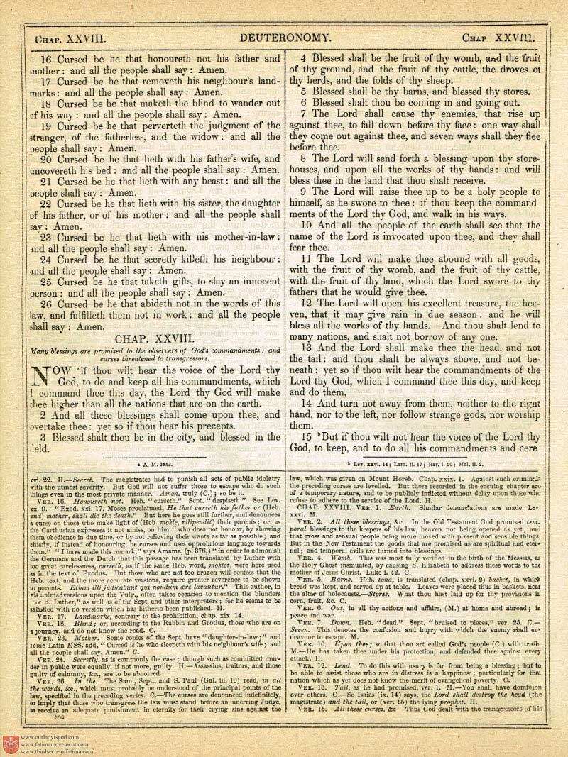 The Haydock Douay Rheims Bible page 0535