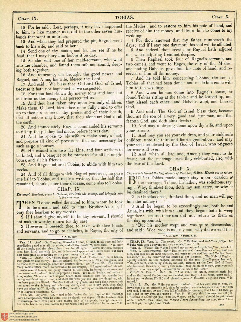 The Haydock Douay Rheims Bible page 0858