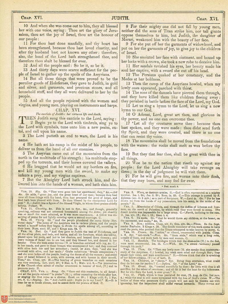 The Haydock Douay Rheims Bible page 0875