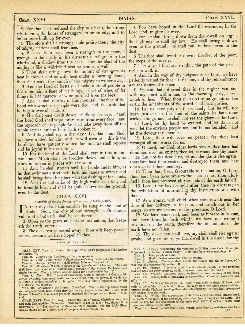 The Haydock Douay Rheims Bible page 1141