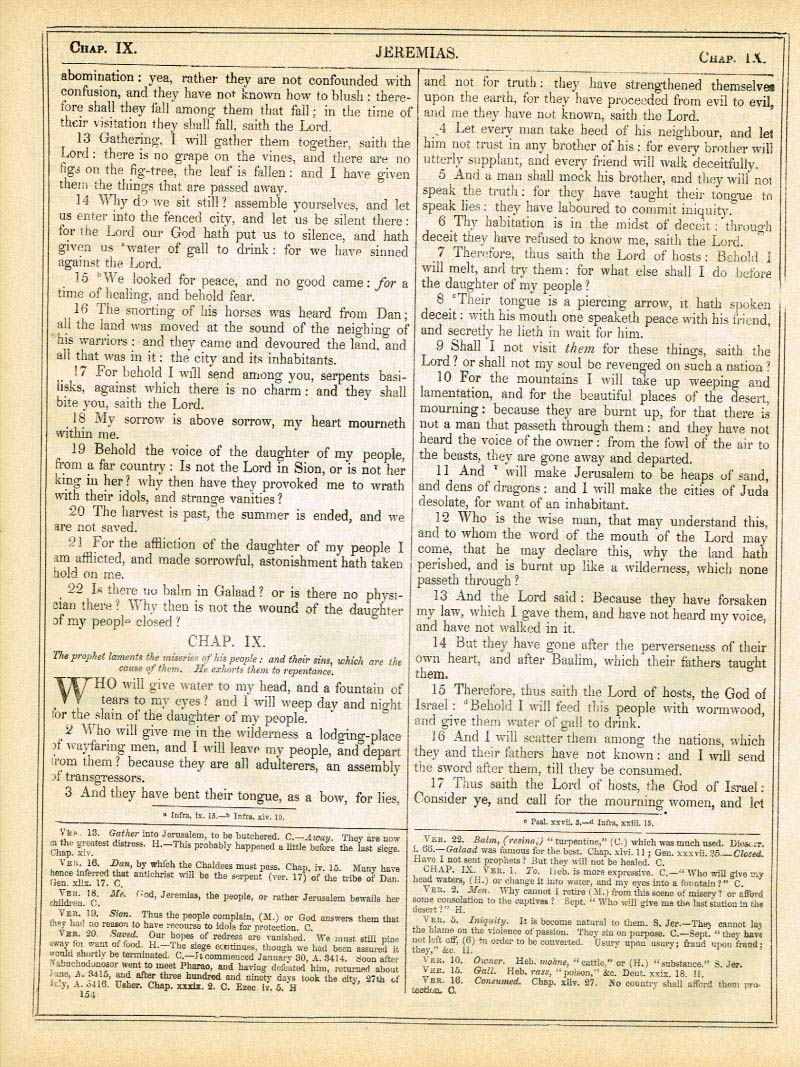 The Haydock Douay Rheims Bible page 1180