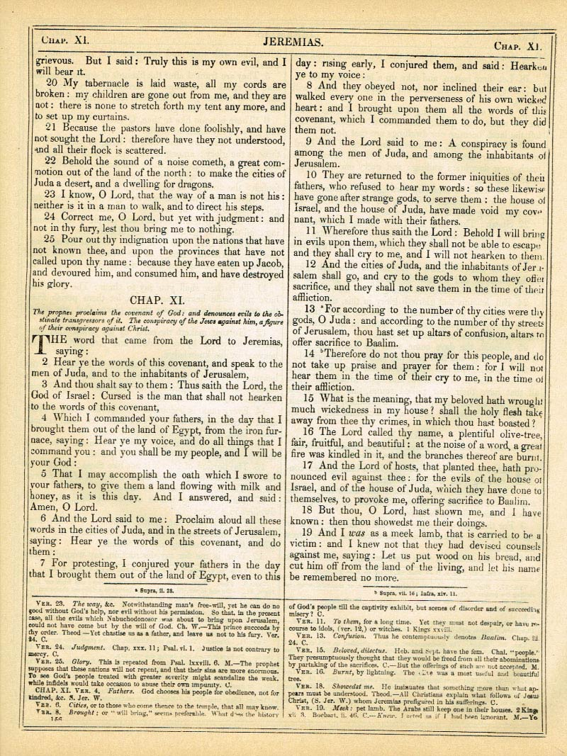 The Haydock Douay Rheims Bible page 1182