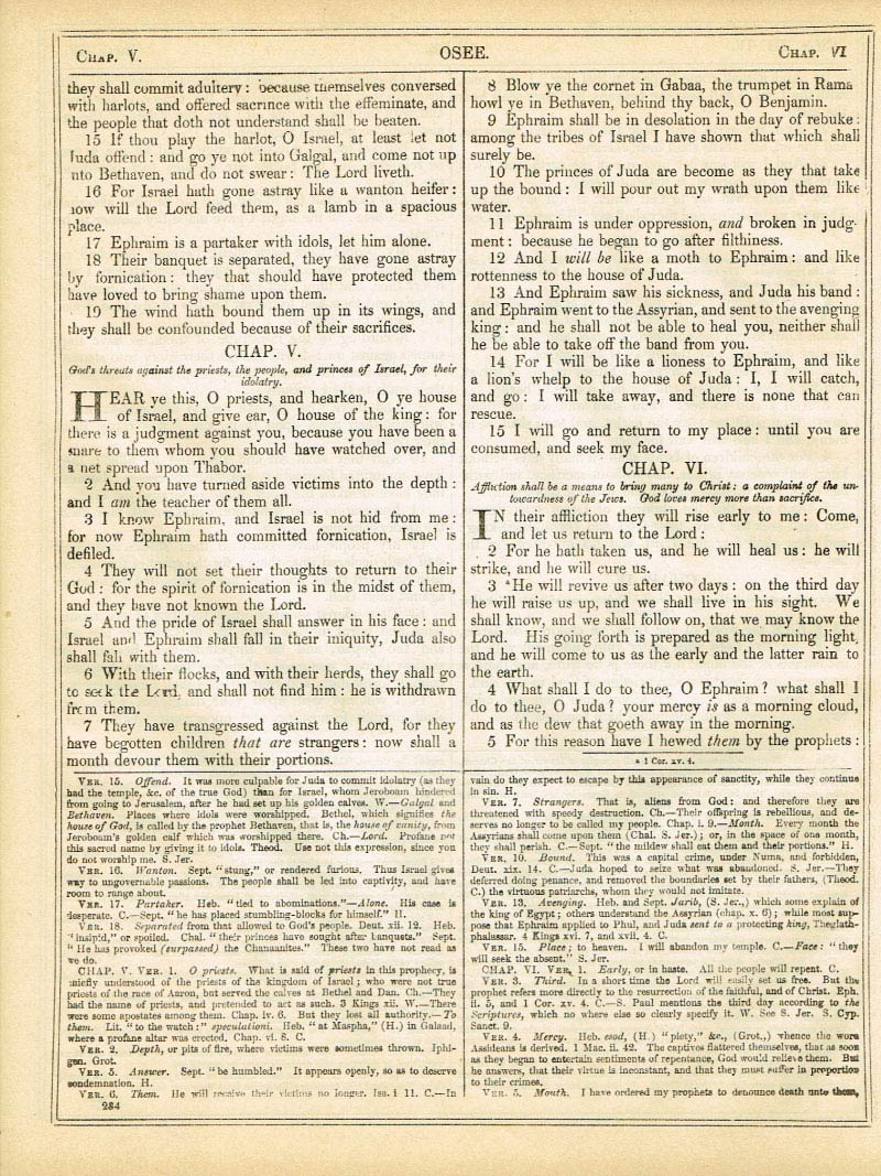 The Haydock Douay Rheims Bible page 1310