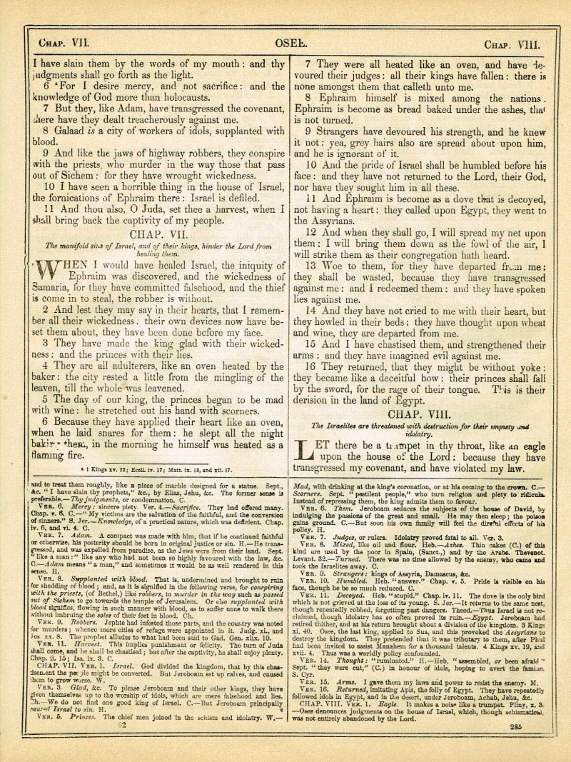 The Haydock Douay Rheims Bible page 1311