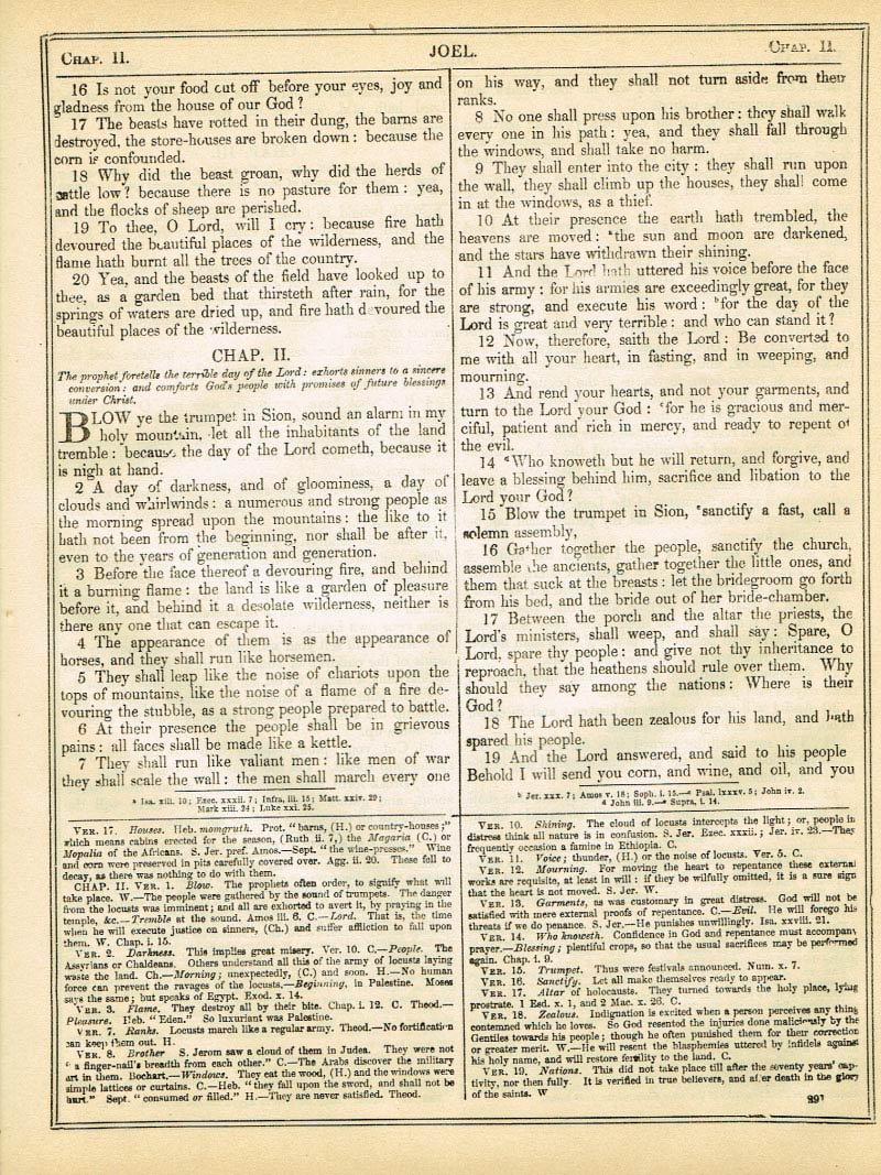 The Haydock Douay Rheims Bible page 1317