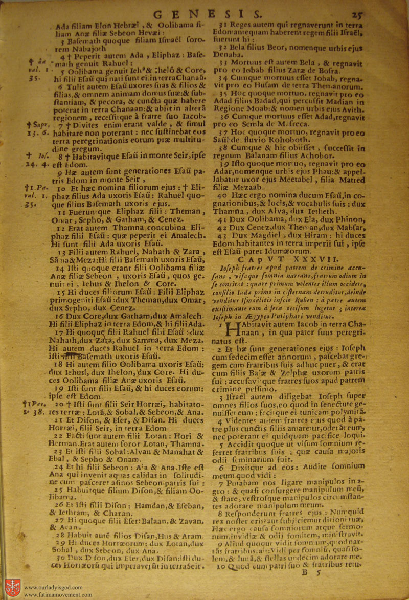 Catholic Latin Vulgate Bible page 0040