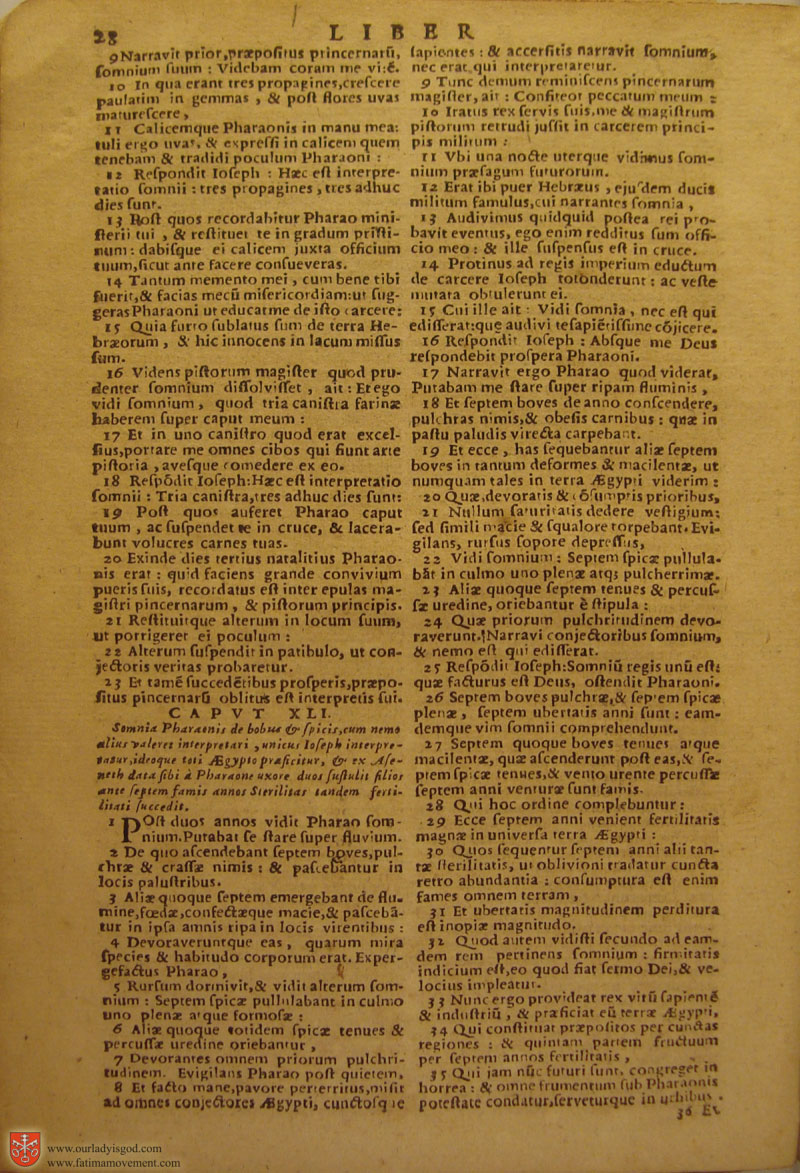 Catholic Latin Vulgate Bible page 0043