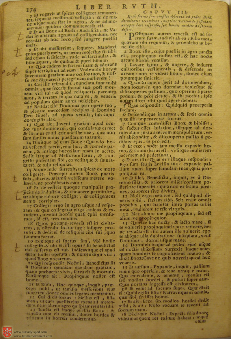 Catholic Latin Vulgate Bible page 0189
