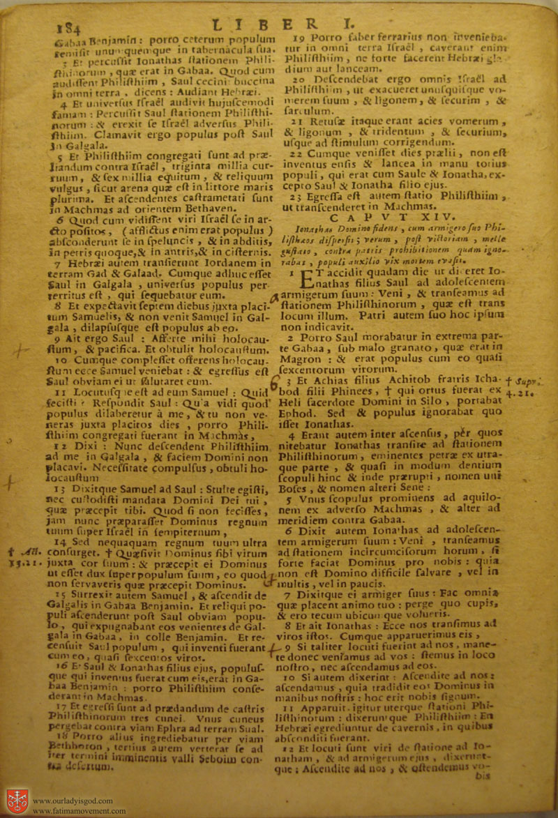 Catholic Latin Vulgate Bible page 0199