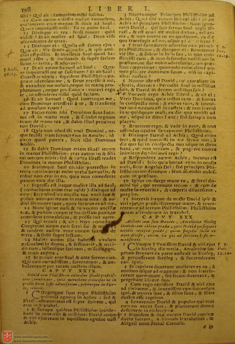 Catholic Latin Vulgate Bible page 0213