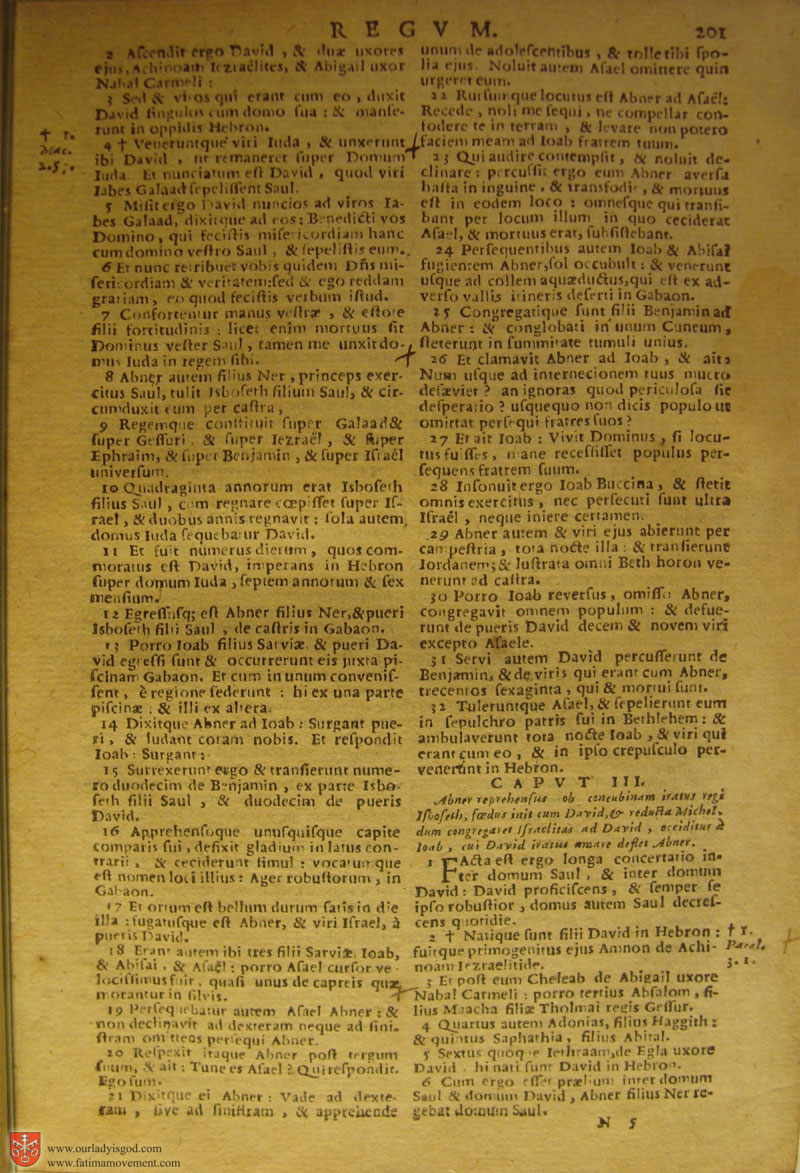 Catholic Latin Vulgate Bible page 0216