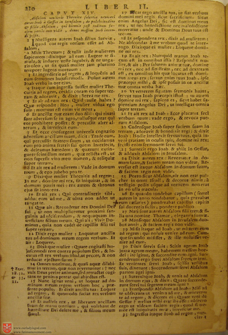 Catholic Latin Vulgate Bible page 0225