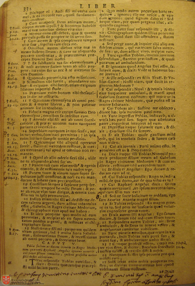 Catholic Latin Vulgate Bible page 0347