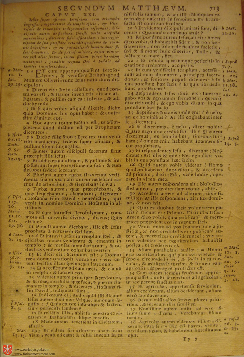 Catholic Latin Vulgate Bible page 0728
