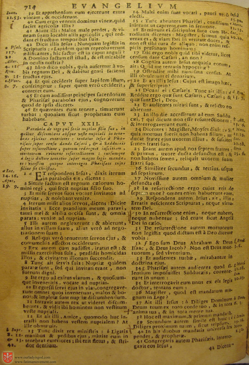 Catholic Latin Vulgate Bible page 0729