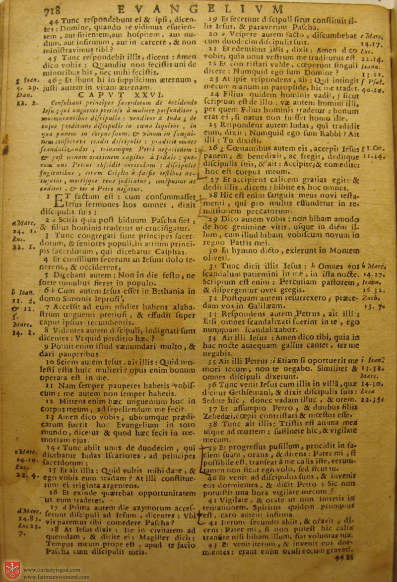 Catholic Latin Vulgate Bible page 0733