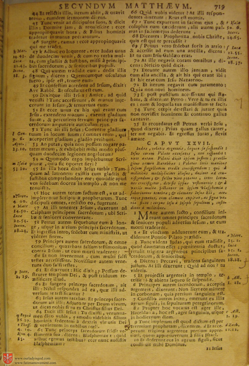 Catholic Latin Vulgate Bible page 0734