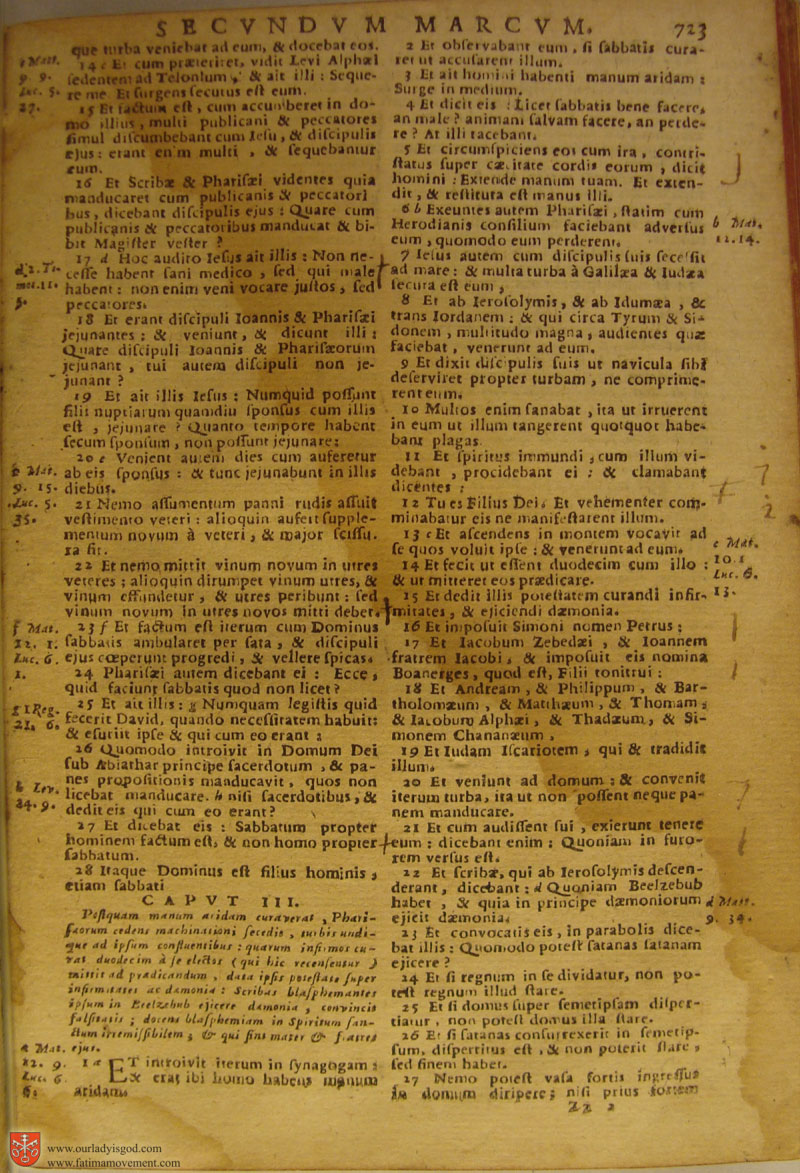 Catholic Latin Vulgate Bible page 0738