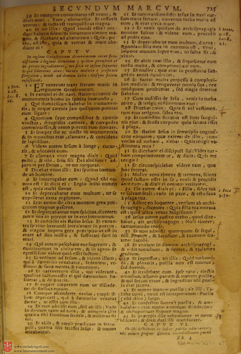 Catholic Latin Vulgate Bible page 0740