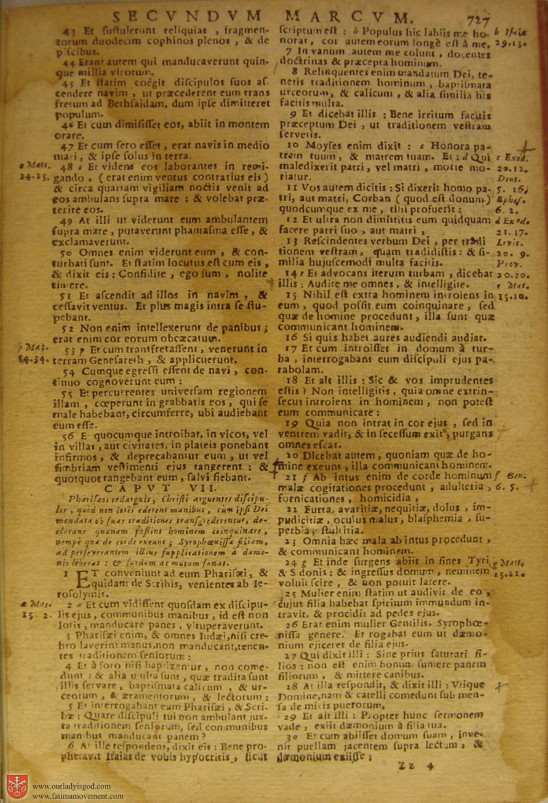 Catholic Latin Vulgate Bible page 0742