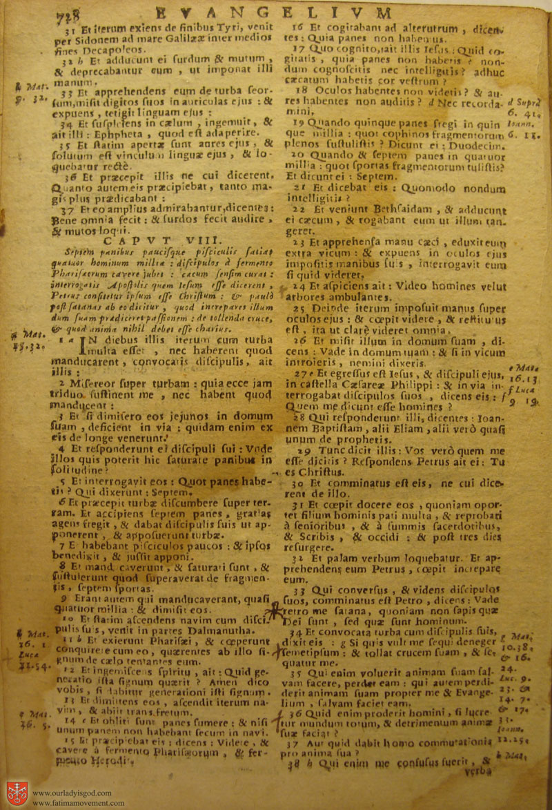Catholic Latin Vulgate Bible page 0743
