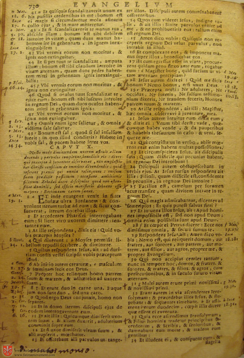 Catholic Latin Vulgate Bible page 0745