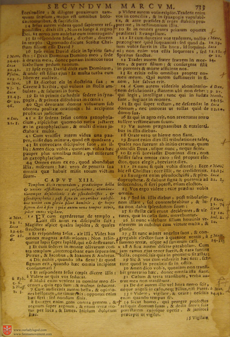 Catholic Latin Vulgate Bible page 0748