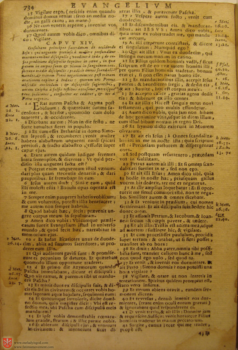Catholic Latin Vulgate Bible page 0749