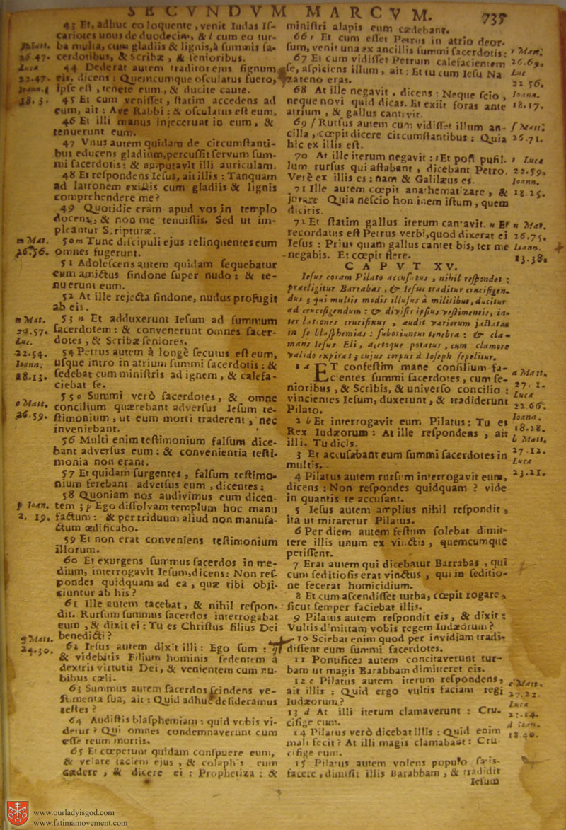 Catholic Latin Vulgate Bible page 0750