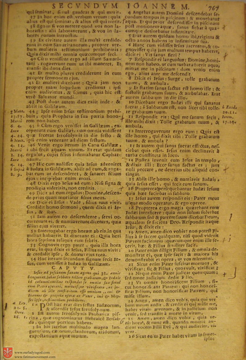 Catholic Latin Vulgate Bible page 0782