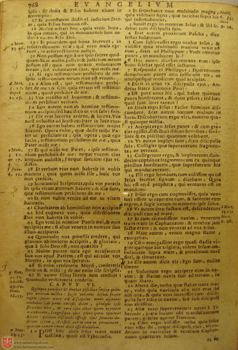 Catholic Latin Vulgate Bible page 0783
