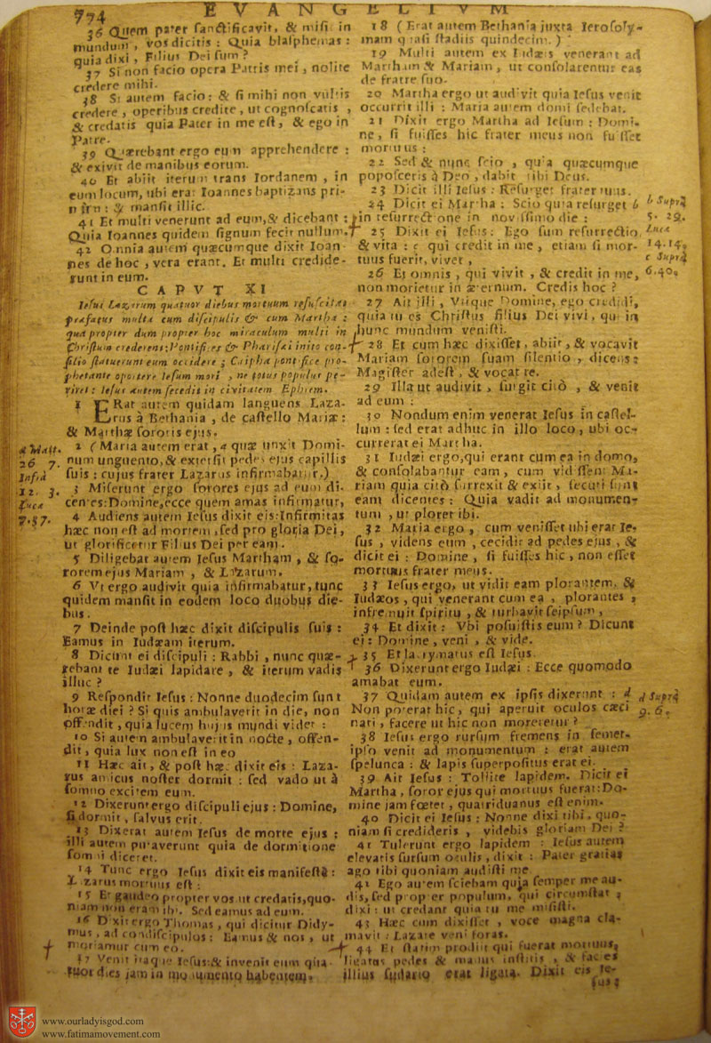 Catholic Latin Vulgate Bible page 0789