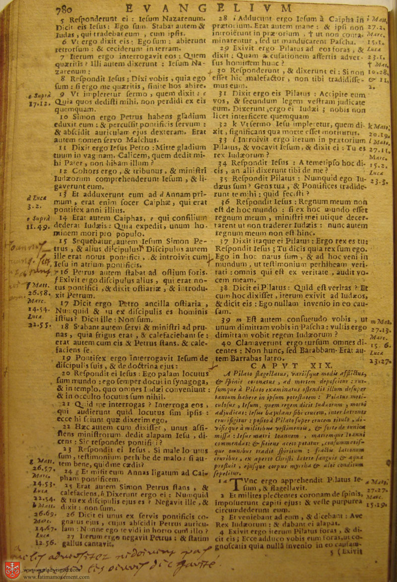 Catholic Latin Vulgate Bible page 0795