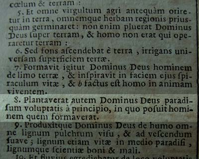 Elias is Deus Dominus in the Latin Vulgate