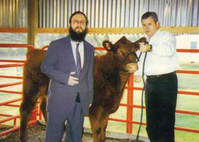 The red calf of modern day Jews